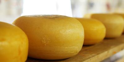 10 liter melk 1 kilo kaas geen duurzame vleesvervanger. Vegetarisch Weekmenu