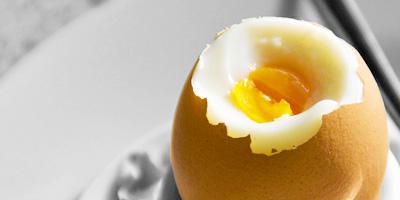 Eieren eten is dat gezond voor kippen? Blog op Vegetarisch Weekmenu