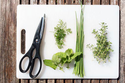Kruid het verschil tussen kruiden en specerijen Vegetarisch Weekmenu