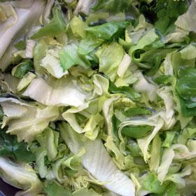 2 in 1 recept met andijvie stampot gesneden snelle hap Vegetarisch Weekmenu