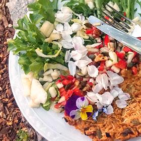 Koolraap 2 in 1 recept bloemen op je bord kruidentuin wildplukken Vegetarisch Weekmenu