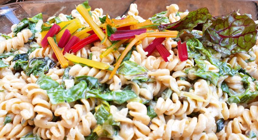 BBQ kikkerertwen pasta salade regenboog snijbiet vegan Vegetarisch Weekmenu