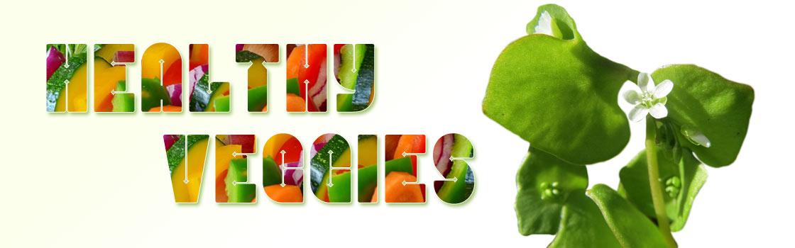 Groente van het seizoen december milieuvriendelijk koken Vegetarisch Weekmenu