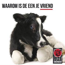 Huisdieren verwaarlozen mag uitspraak rechter